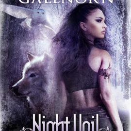 Excerpt: Night Veil