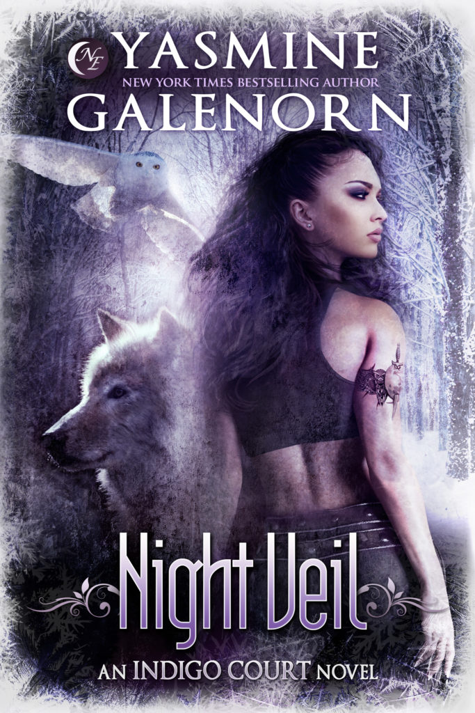 Night Veil Cover