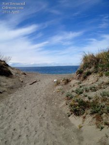 sandy path to the shore