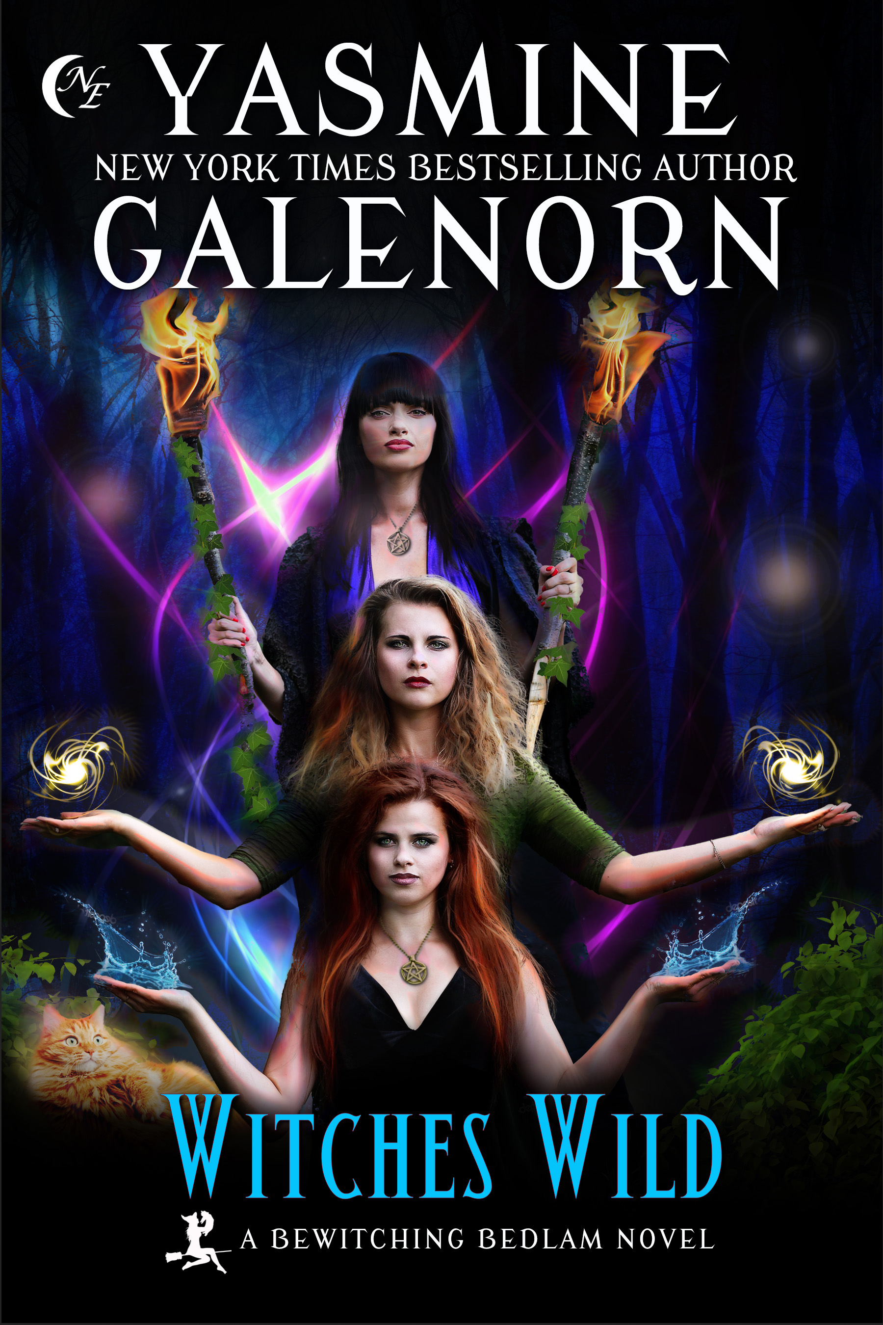 Backlist Blitz Excerpt: Witches Wild