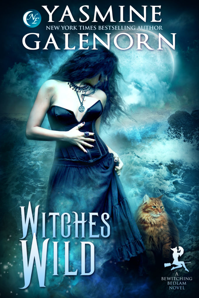 Book Cover: Witches Wild