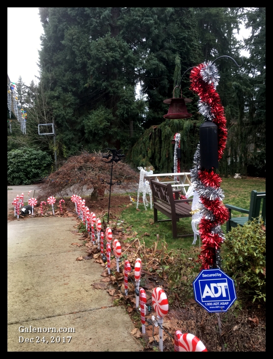 december 24, my walkway