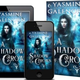 A SHADOW OF CROWS RELEASE DAY!