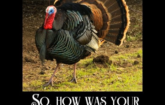 Turkey, asking how was your thanksgiving?