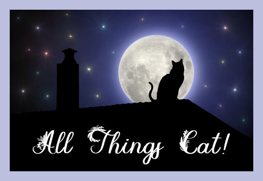 All Things Cat