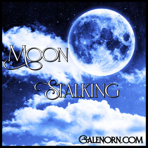Moon Stalking--moon behind clouds