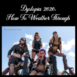 Dystopia 2020 and How To Weather It