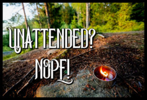 Lit tealight candle on rock against trees in forest
