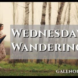 Wednesday Wanderings